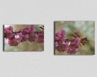 2 Fine Art Botanical Prints, Flower Wall Art, Nature Photography, Floral Decor, Wall Art, Nursery decor, Spring Diptych