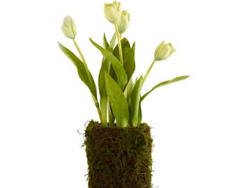 Tulip in Moss Twig Basket