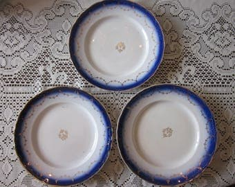 Flow Blue La Francaise Porcelain Dinner Plates