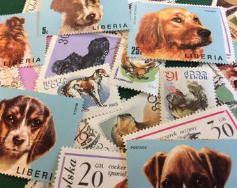 Vintage postage stamps (set of 50+)- topical collection- various dogs- off paper