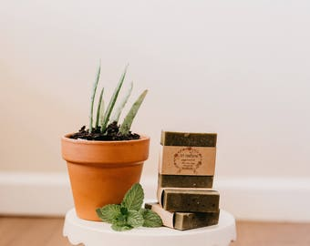Peppermint & Aloe Vera Bar Soap