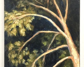 Night tree | oil painting | 9 x 12