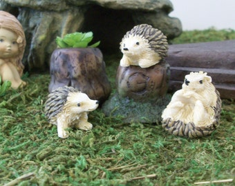 Set of 3 miniature hedge hogs with tree trunk planters,  terrariums or table top decoration