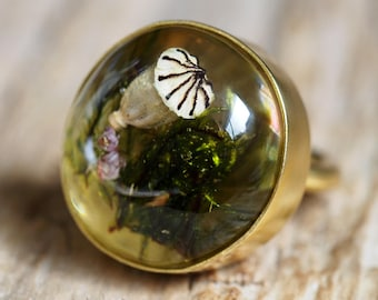 Moss and Poppyhead Resin Gold-plated Sterling Silver Ring, Resin Ring, Nature Jewelry, Woodland Jewelry, Botanical, Terrarium Jewelry