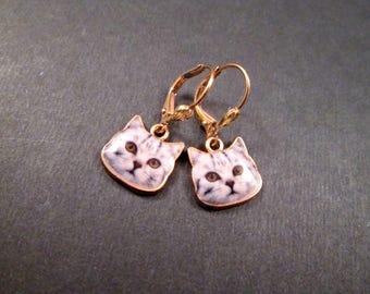 CAT Face Earrings, Photo Print and Resin, Gold Dangle Earrings, FREE Shipping U.S.