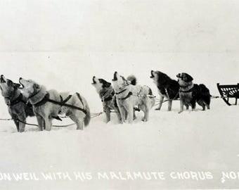 vintage photo Seward Alaska Milton Weil Malmute Chorus Nome Lomen Brother Studio RPPC
