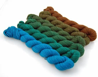 INTO the WOODS- MYS 622 Gradient set- 150 yards per skein (900 yards total)