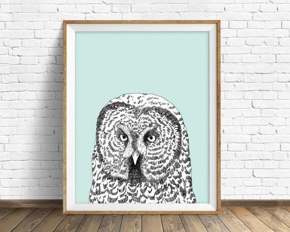"owl, owl art, owl print, gray owl, sage green, gray, drawing, large art, large wall art, fine art print, modern art print, art  - ""Gray Owl"""