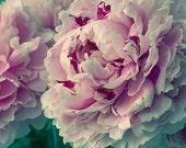 Peony Art, Fine Art Print, Peony Wall Art, Bedroom Decor, Pink Green Flower Art Work, Floral Wall Decor
