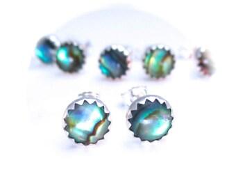Abalone Stud Earrings, 6 mm Studs, Abalone Earrings