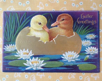 Victorian Easter Postcard Ducklings in Egg on Lily Pond Embossed Vintage Cottage Style