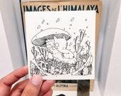 Mushroom Sticker
