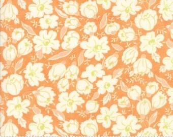 Coney Island (20285 15) Orange Sherbet Buttercups by Fig Tree & Co.