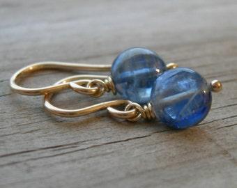 Blue Kyanite Gold Fill Earrings