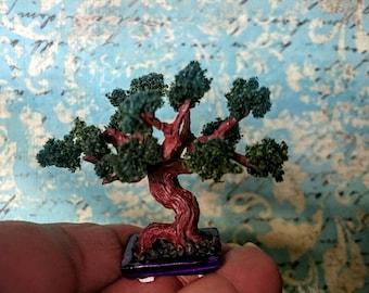 Miniature bonsai tree