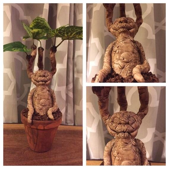 MTO Harry Potter Mandrake planta