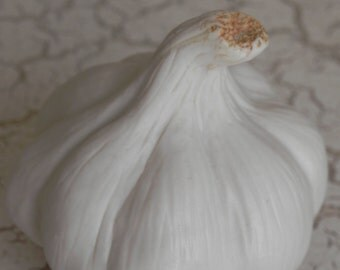 gorgeous garlic bulb hand made from porcelain