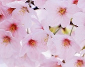 RESERVED - Custom Kanzashi sets for Alicornia