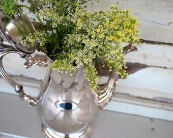 Silver Plate Teapot, International Silver Co, Vintage Silver Teapot, WM Rogers Silver,