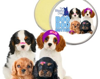 Cavalier King Charles Spaniel Boo Boo Butter All Natural Handcrafted Herbal Balm for Your Dog's Discomforts 1 oz tin with Cavalier Label