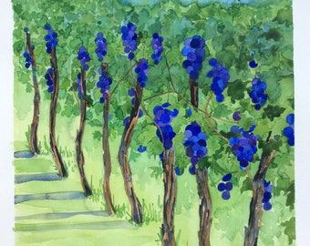 Original Watercolour Painting Vineyard Winery