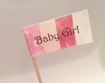 Baby Girl Cupcake Flags - Printable, Digital Download - SALE
