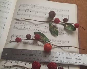 3 Vintage Floral Berry Sprays