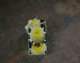 Yellow macro of flowers domino tile pendant