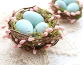 RESERVED ~ Spring Bird Nest, Shabby Chic Bird Nest, Girl Bird Nest