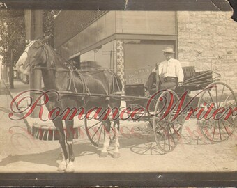 Horse Drawn Carriage Man Sits in It Vintage Photo