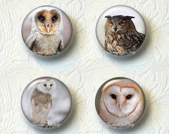 Owl Magnet Sets Choose from 4 Different Prints Buy 3 Sets Get 1 Set Free 552M