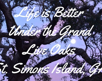 St.Simons Moon live oak trees with a quote