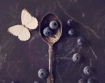Butterfly & Blueberries ~ 8x10 photo print