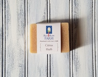 Citrus Herb Goat's Milk Soap, Cold Process, Extra-Moisturizing, 1 bar