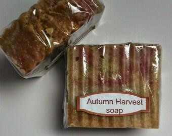 Autumn Harvest  handmade soap