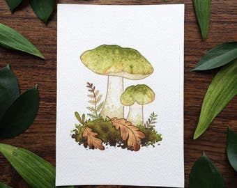 Original Painting Mushroom Watercolor Painting by Michelle Kent