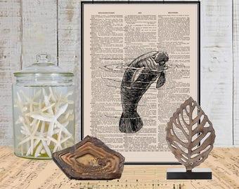 Manatee print on Dictionary or music page COUPON Dictionary art print Wall decor Sheet music Digital print Marine mammal art No. 439