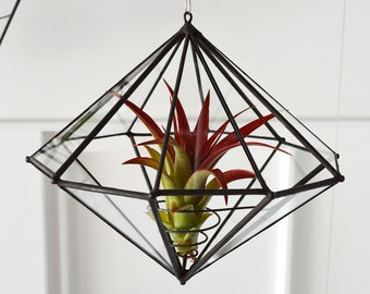 Mid Century Modern 10 Sided Air Plant Planter Made from Reclaimed Window Glass