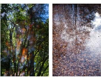 Woodland reflections photographs. Pair of forest photography prints. Woodland art series, forest art, home decor. Large oversized artwork