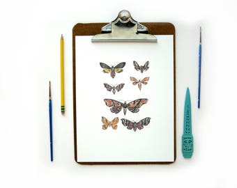 Moth Collection Watercolor Print | Watercolor Art Print Mothes Butterfly Scientific Study Illustration