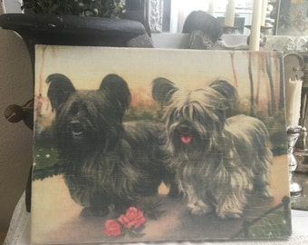 Vintage Printed Canvas Australian Terriers Dog Velvet Art