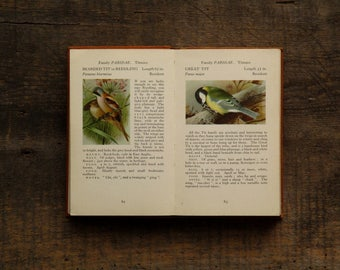 Vintage bird book British 1960s The Observer's Book of Birds