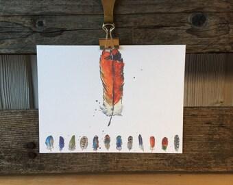 Orange Feather PostCard - Feather Illustration - Bird