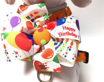 Dog Harness- The Happy Birthday