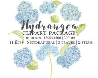 Hydrangea Clipart, Hydrangea Watercolor Clipart, Hydrangeas, Hydrangea Painting, Hydrangea Graphic, Hydrangea Hand Painted, Hydrangea Images