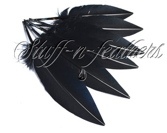 Black turkey wing feathers, real feathers  long trimmed loose for millinery, wedding, table setting / 10-12 in (25-30 cm) long, 6 pcs / F178