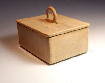 Lidded box container