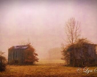 Misty Day, North Carolina Photography, Foggy Trees, Home Decor, barn, Landscape, fine art, wall art, farm, Nash county, North Carolina