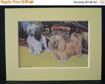 SALE LHASA APSO Terrier Dogs Vintage Mounted 1958 terrier dog plate print Unique Thank you, Congratulations, Birthday gift