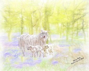 animal print, animal art,  farmyard art, farm animals, farm art, farmhouse décor, goat picture, goat print, country print, animal décor